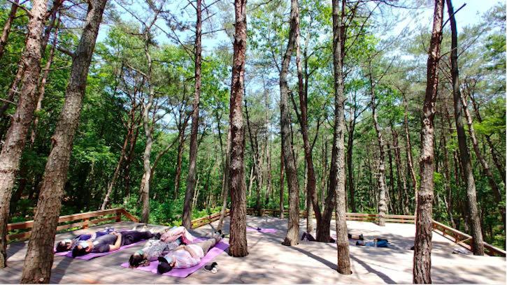 Must-visit new wellness spots in South Korea