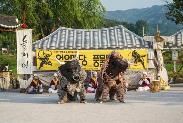 Bullfighting performance at Busan Citizens Park