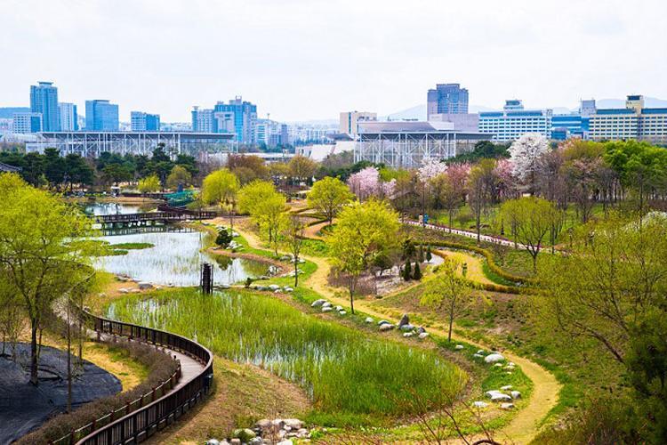 Photo: Daejeon Hanbat Arboretum