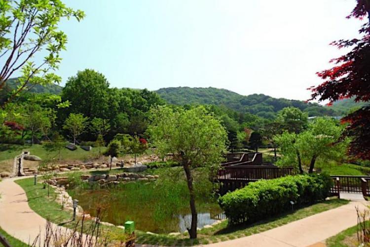 Image: Hwamyeong Arboretum website