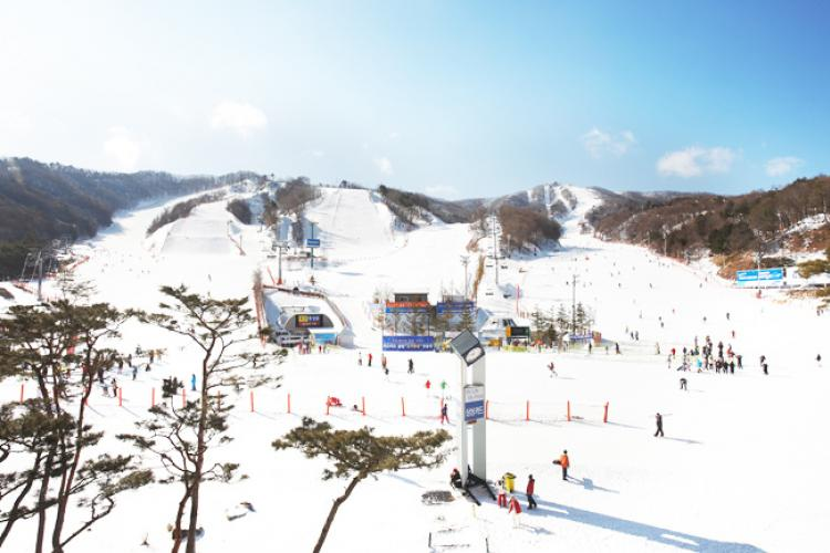 Vivaldi Park Ski World (Credit: Daemyung Theme Park & Entertainment)