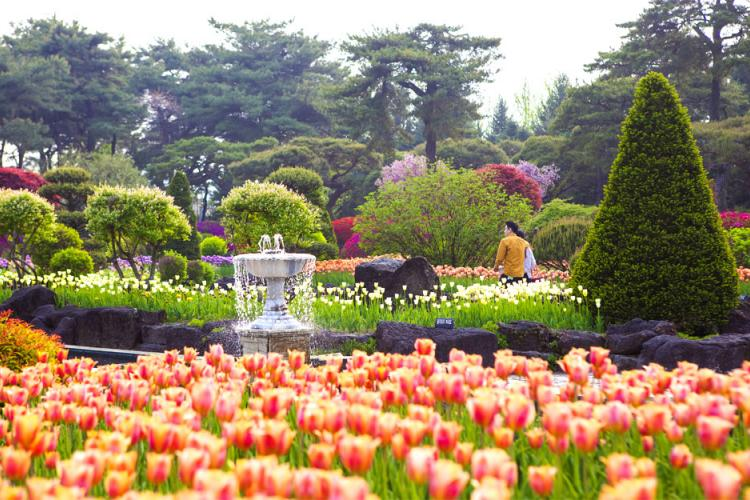 The Botanical Garden BCJ