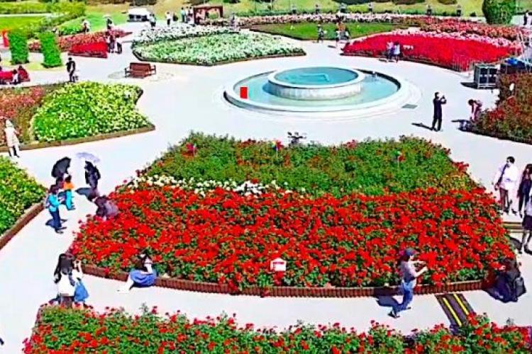 Image: Ulsan Rose Festival