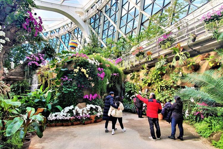 Photo courtesy of Seoul botanic park
