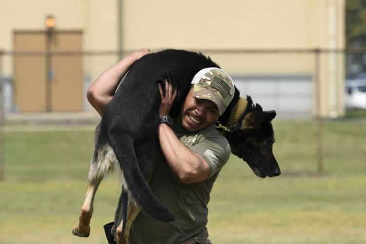Staff Sgt. Ricardo Roque, 8th Security Forces Squadron military working dog handler, carries Kazy, 8th SFS MWD, during the Police Week Memorial K-9 Competition at Kunsan Air Base, Republic of Korea, May 16, 2019. National Police Week honors those who serve and have served in law enforcement, as well as memorializes those who have made the ultimate sacrifice. (U.S. Air Force photo by Senior Airman Savannah L. Waters)