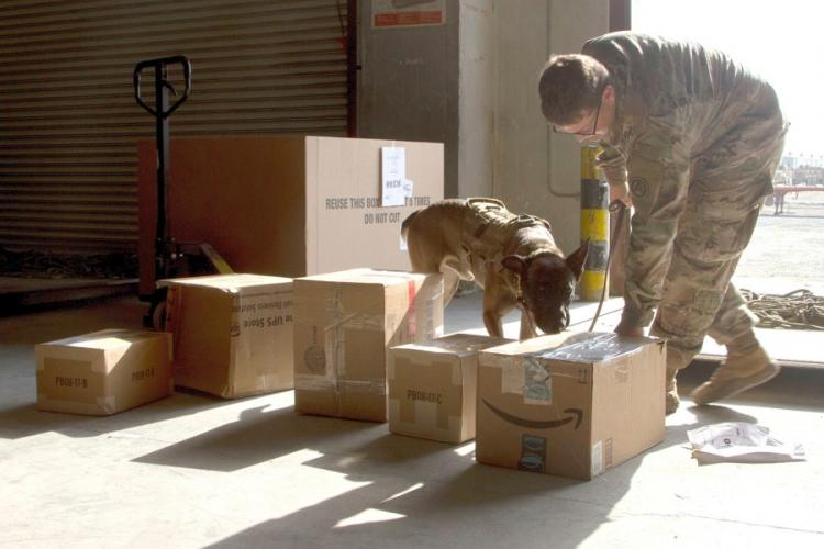 Military working dog Roger sniffs mail for contraband at Joint Military Mail Terminal, Camp Arifjan, Kuwait, Dec. 1, 2017. THOMAS CROUGH/U.S. ARMY