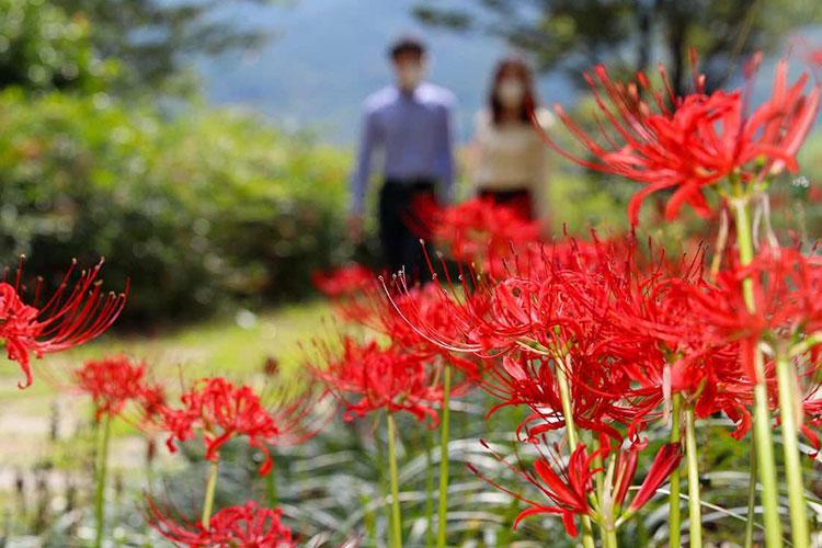 Images: Sancheong-gun