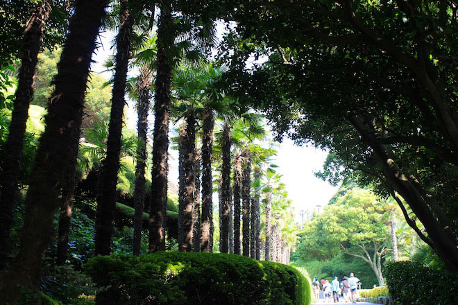 Oedo Botania Must Visit Island In Korea Stripes Korea